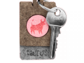 Key chain P3y